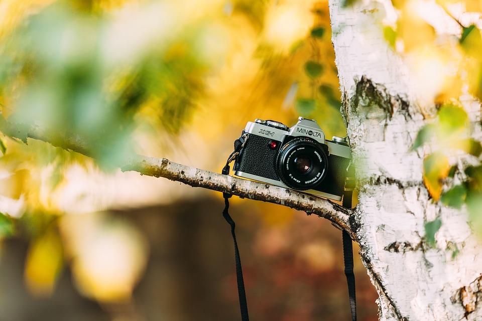ベストなカメラを見つける方法